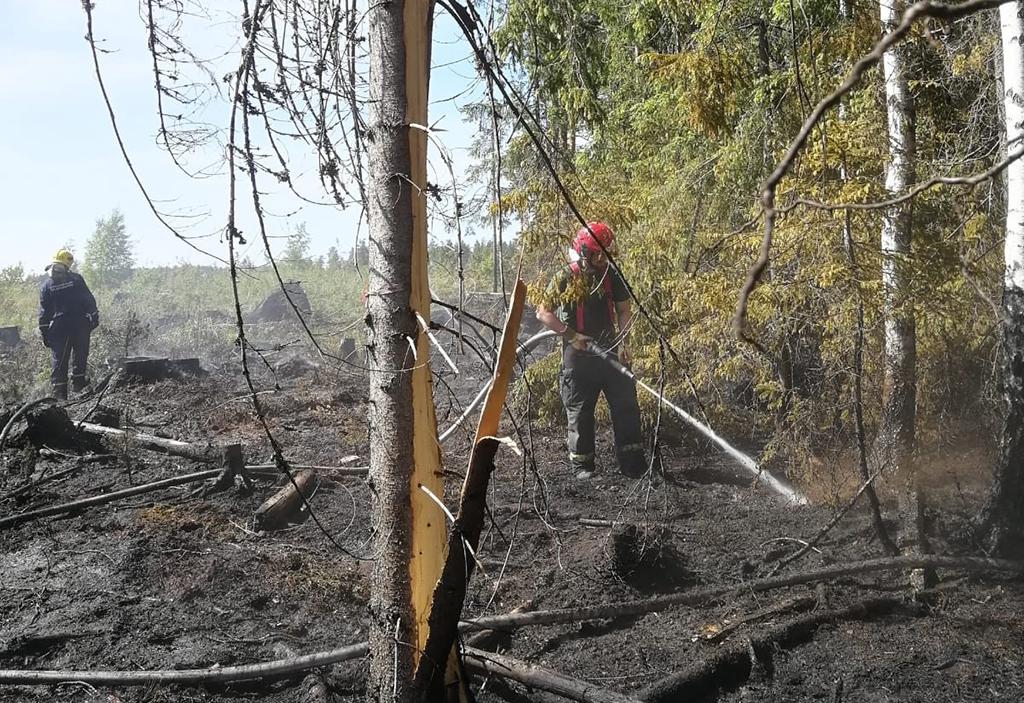 Lemillä Etelä-Karjalassa paloi maastoa  torstaina noin puoli hehtaaria.