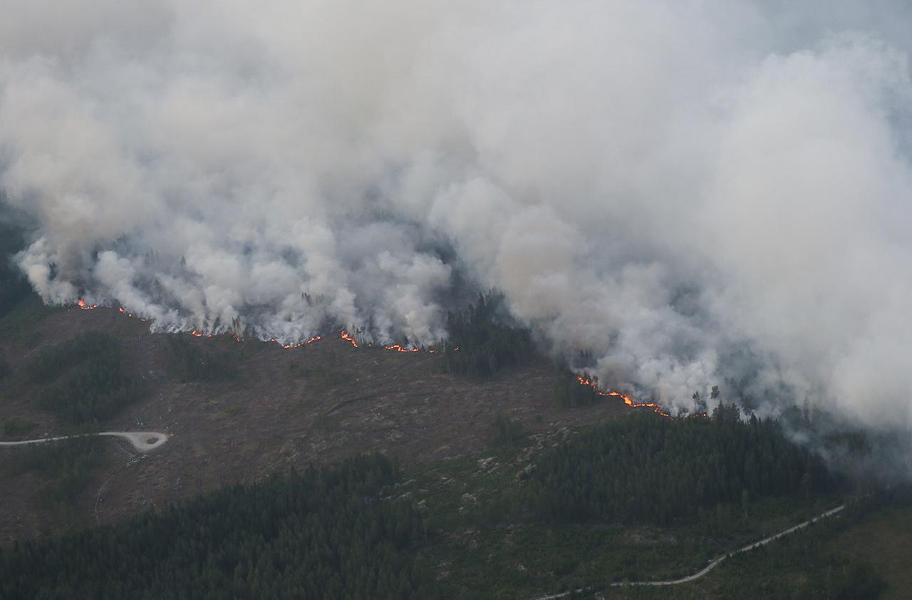Ruotsissa roihusivat massiiviset metsäpalot paitsi vuonna 2018, myös vuonna 2014.