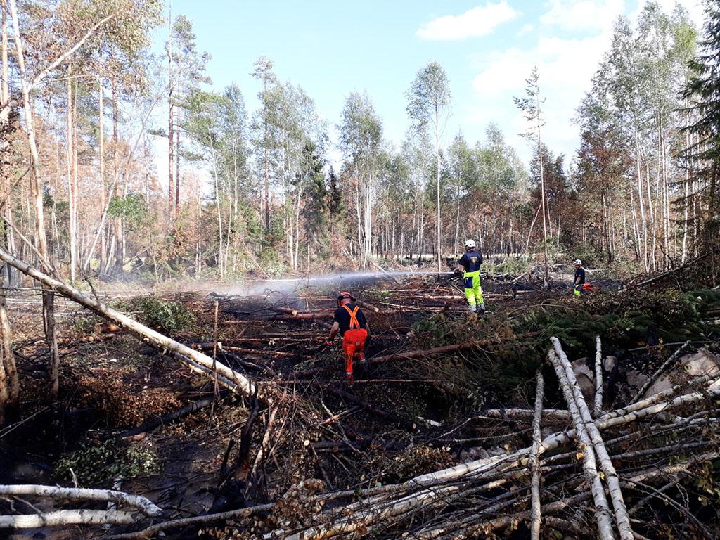 Palomiehet raivaavat puita moottorisahalla, jotta pääsevät sammuttamaan puiden alla olevia palopesäkkeitä.