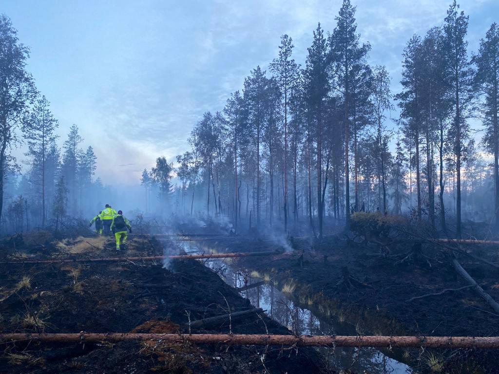 Metsäpalojen lentotähystys on lentokoneilla tapahtuvaa valvontaa maastopalojen havaitsemiseksi. Lentotähystystä tehtiin Kalajoenkin metsäpalon aikana, jotta havaittaisiin mahdolliset paloheitteet.